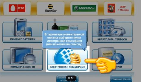 Выборе платёжной системы в терминале.